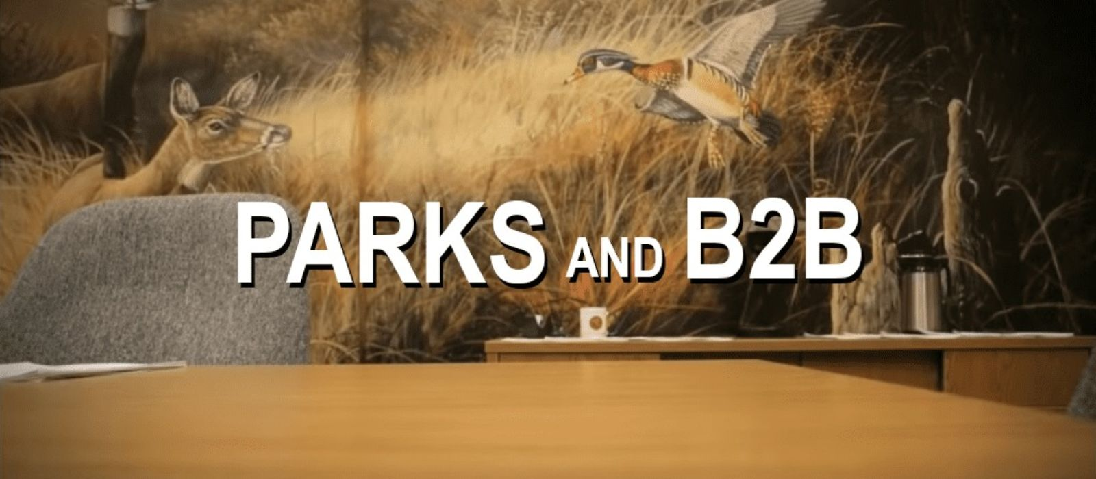 parks-and-b2b